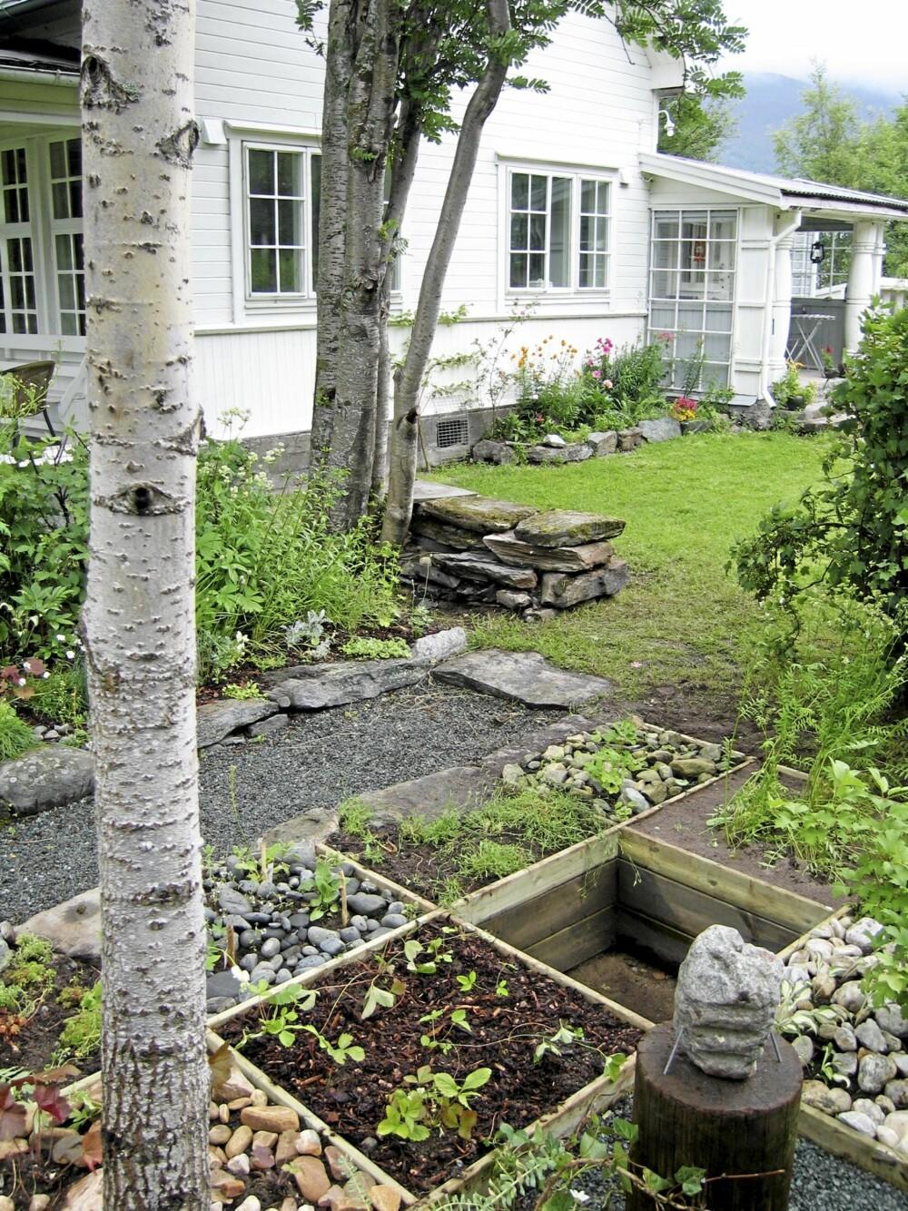 TIDSBESPARENDE: Deler av hagen er øremerket blomster og urter. Organiseres dette i trekassetter som dette, med ett rom for hver vekst får du både oversikt og et system det er lett å vedlikeholde.