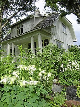 STORE; VARIGE BED: Inspirert av den engelske Sissinghurst-hagen laget Kvien store bed med kun store, hvite vekster. De står et stykke unna det hvite huset og de er både flotte å se på, samt varige og greie å holde orden på.