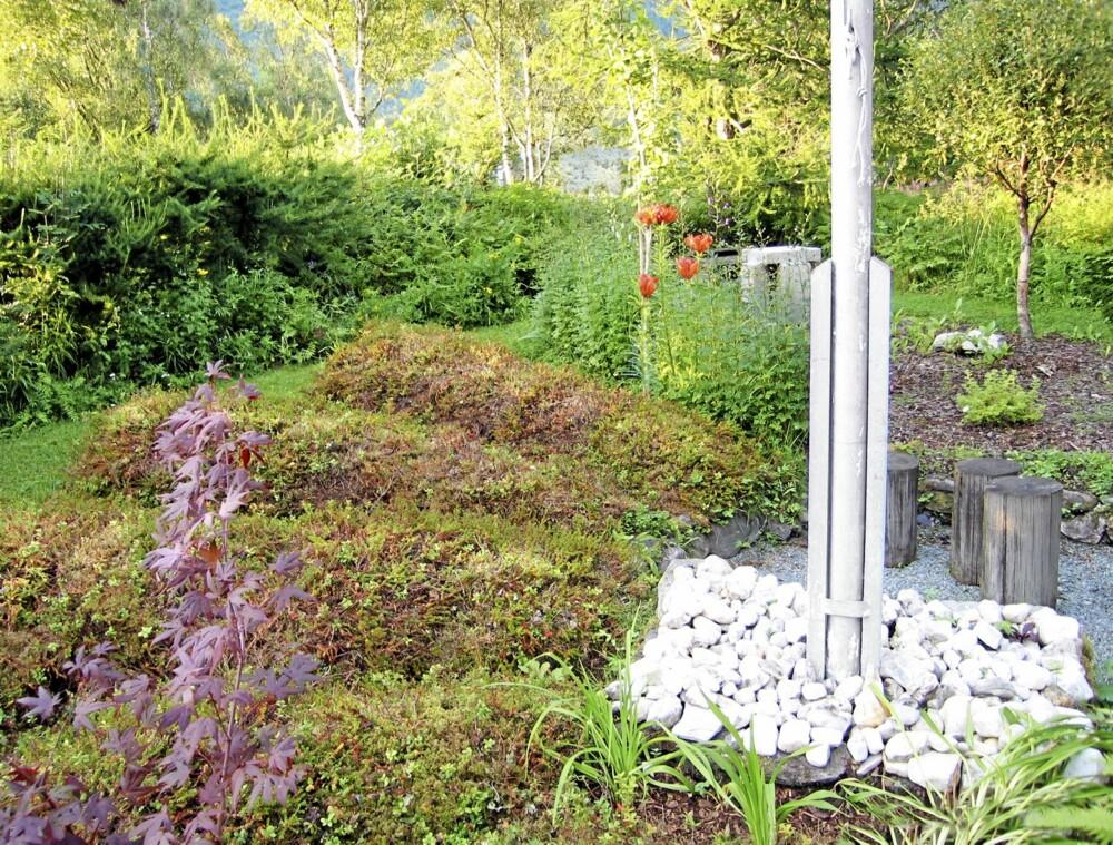 KREATIVE FLAK: PÅ områder som dette, uten planter under kan det funke å legge hele flak av skogbunn. De er dekorative og vedlikeholdsfrie.