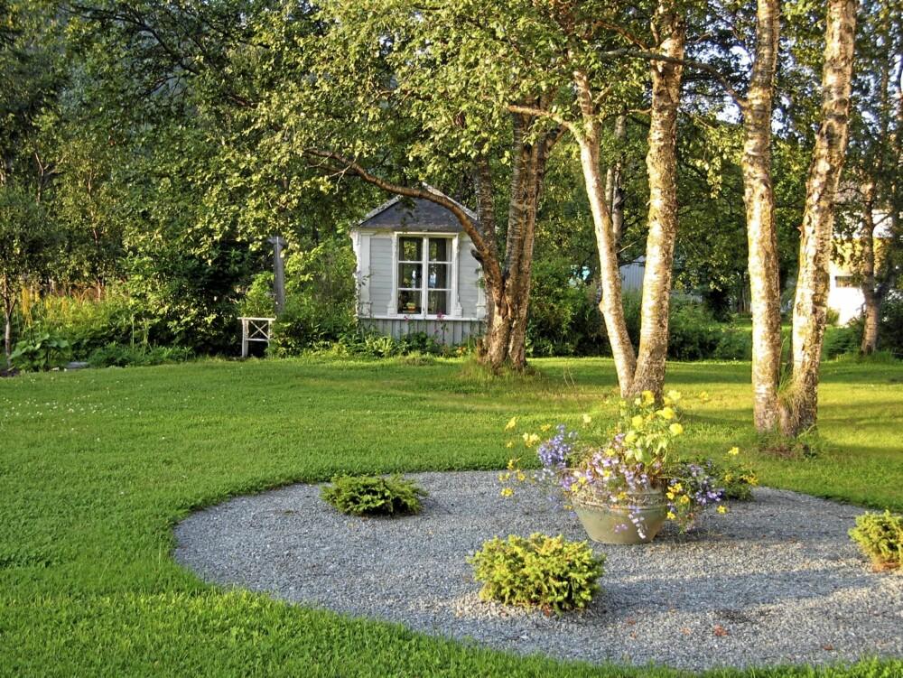 SMART PLASSERING: Setter du enkeltplanter som innslag i en stor grusflate slipper du å klippe gresset rundt dem. Det sparer du også tid på...