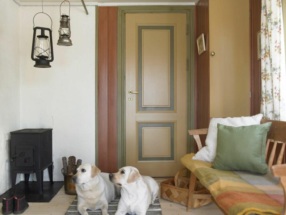 KONTRASTER: I denne hytta er det brukt ulike farger på veggene og døren. Døren blir dermed et tydelig element i rommet. Den duse gulfargen hentes opp i skapdøren og benken, mens grønnfargen plukkes opp i putene. Siden fargene er analoge og komplementære, gir det et behagelig uttrykk.