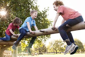 UTEAKTIVITETER FOR BARN: Det finnes mange morsomme aktiviteter for barn ute i naturen. Barneaktivitet ute kan for eksempel være hinderløype ute i skogen.