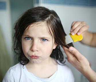 BEKJEMPE LUS: Har du barn i hus, kan det være en idé å oppbevare både lusekam og lusekur i medisinskapet.