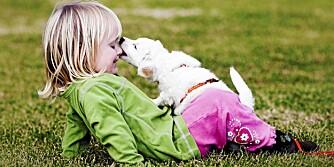 GODE KAMERATER: Et kjæledyr kan bli som et søsken for barnet, sier barnepsykolog.