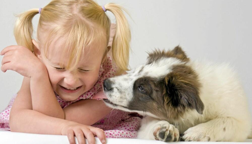 NÆRT FORHOLD: Hunden kan bli en fin lekekamerat for barnet. Men du kan aldri stole fullt og helt på en hund, advarer veterinær.