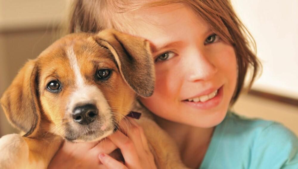 BEST MED HUND: En familiehund kan være et godt tilskudd til familien, men i følge eksperter er norske familier for dårlige til å velge rett hunderase.