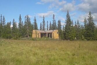 ØKOLOGISK AVTRYKK: Arkitektene ønsket å konstruere en hytte som satte et minst mulig økologisk avtrykk.