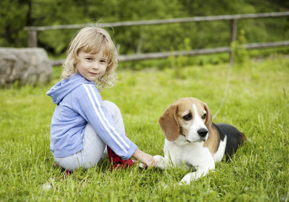 GODT FORHOLD: Barn og hund kan bli gode venner.