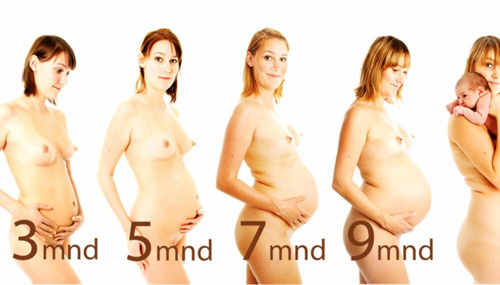 UKE FOR UKE: Stine Malene Lunds (22) graviditet ble fulgt av fotografen.