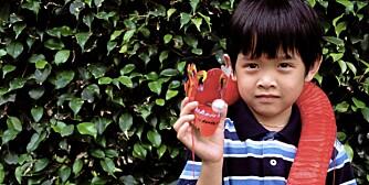 Navn avgjør skjebnen: Kinesiske gutter får ofte navn etter dyr foreldrene ønsker de skal få egenskapene til, som drage eller tiger. Jenter får ofte navn etter blomster.