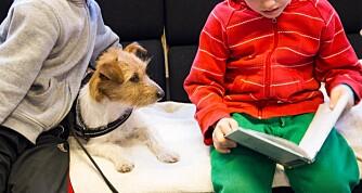 LETTERE MED HUND: Med en hund til stede synes mange barn det blir lettere å lese høyt.