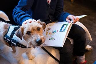 FØLGER MED: Barna opplever at hundene følger med på det de leser, og velger ofte bøker de tror hundene vil like.