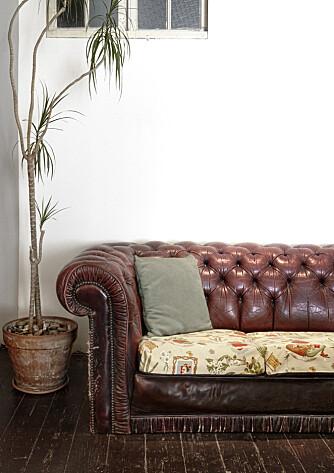 KJÆR SKATT: Chesterfield-sofaen er en av Anas eldste møbler. Den har hun bært med seg rundt omkring i London de siste syv årene.