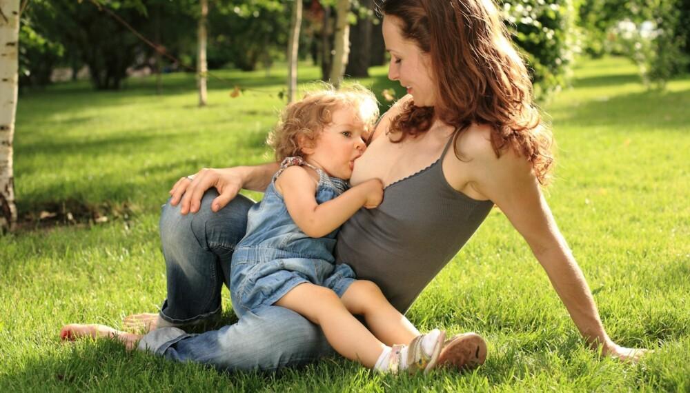STORE BARN: I Norge er amming av store barn tabu, selv om det medfører blant annet store helsegevinster for både mor og barn.