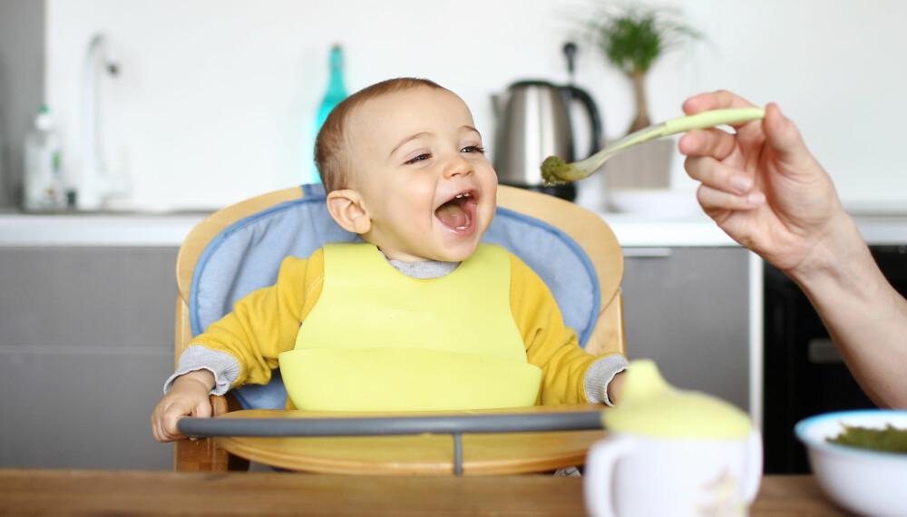 BABYSTOL: Hvilken stol skal du velge til babyen? Sjekk guiden på spisestol til baby her