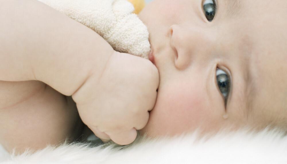 LAMMESKINN TIL BABY: Et lammeskinn er lunt og godt for babyen å ligge på i vogna, men et ullpledd vil gjøre samme nytten.