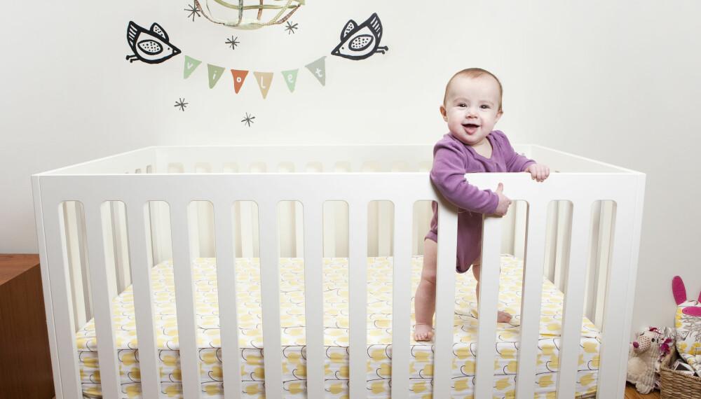 SPRINKELSENG OG BABYSENG: Sprinkelseng kan være lurt å vente med en stund, men pass på at barnet etter hvert blir så stort at det vil klare å klatre ut av babysengen.
