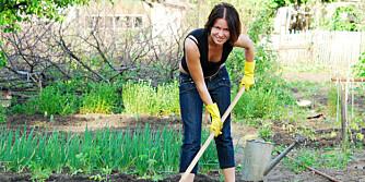 TRAVLE DAGER: Ikke stress med alt du må gjøre, lær deg heller hva du IKKE skal gjøre i hagen.