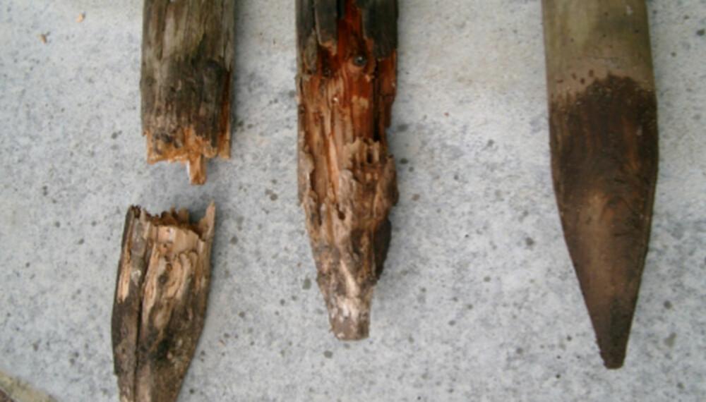 BEST I TEST: I Sverige har man testet hvilke materialer som varer lengst på terassen. Impregnert furu ble den soleklare vinner.