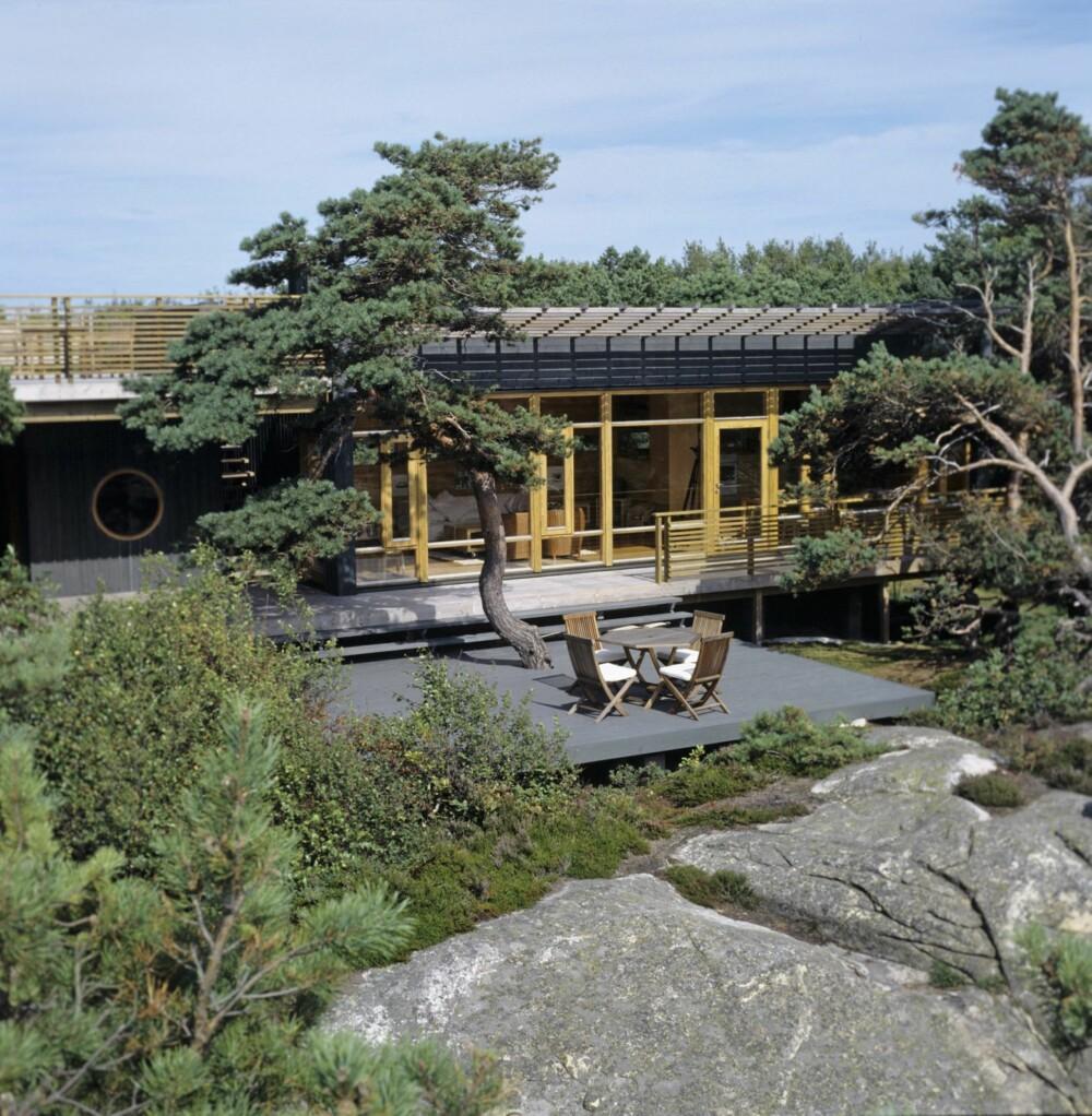 TO KULE TERRASSE: Hytta kryper sammen og forsvinner nesten i Kragerø-skjærgården. Legg merke til at den har to terrasser; en på taket og en på bakken.