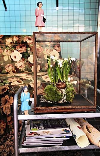 VIVARIUM: På et lite trillebord i stua står en klase med løkplanter i et monter, et såkalt vivarium. Hvite tazetter og snøstjerner har fått litt mose for å holde på fuktigheten. Monteret er fra Designdelicatessen. Styling: Nicoline Olssen.