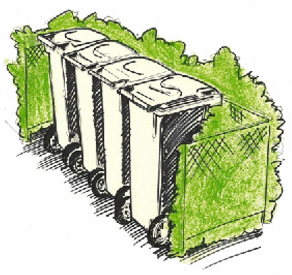 HEKK: Et annet alternativ til å forskjønne rekken med søppledunker i nabolaget, er å plante hekk rundt.