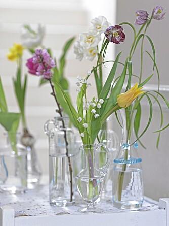 SØTE GLASSVASER: Et dekorasjonstips er å lage mange små buketter og plassere de rundt i ulike glassvaser. Supersøtt.