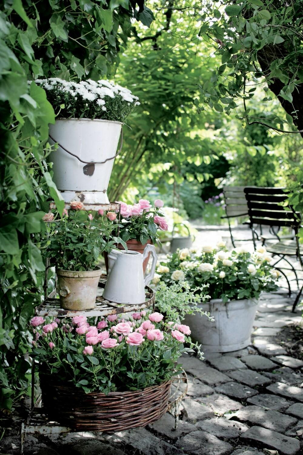 ENKELT OG OVERSIKTELIG: Planter du i krukker og potter unngår du det verste lukearbeidet.