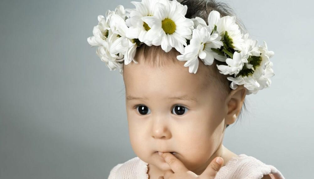 BLOMSTERNAVN: Kunne du tenke deg å kalle babyen din Daisy? Daisy er det engelske navnet på prestekrage, og blant annet datteren til kjendiskokk Jamie Oliver heter dette.