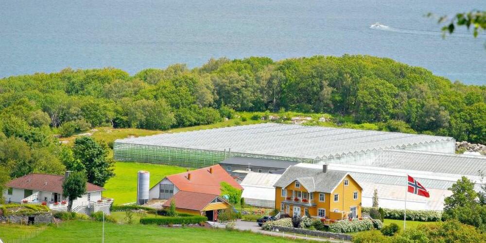 GÅRDSBUTIKKER: På Hanasand gård finner du en moderne gårdsbutikk og kafé i idylliske omgivelser på en travel gård på Rennesøy.