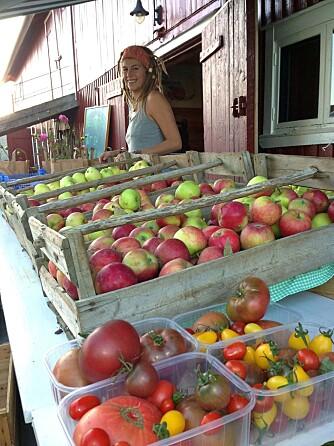 GÅRDSBUTIKKER: På Lindheim gård i Telemark kan du fyll opp med produkter fra fruktbygda Gvarv.