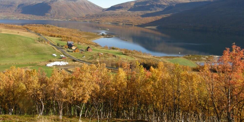 VAKKERT: Vildenvang gårdsysteri ligger idyllisk til i Troms.