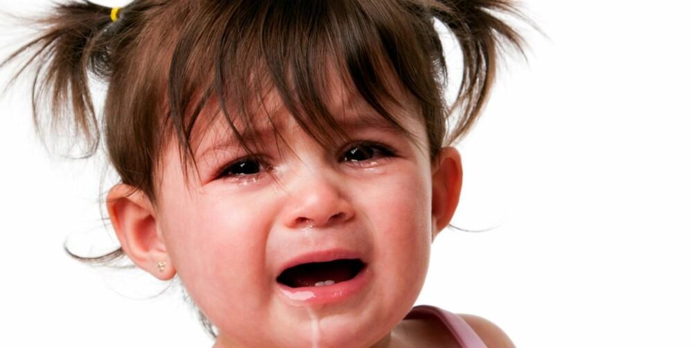TÅREFULL TID: Nå som tusener av små barn skal venne seg til barnehagelivet, blir det mange såre avskjeder - og ditto gjensynsglede.