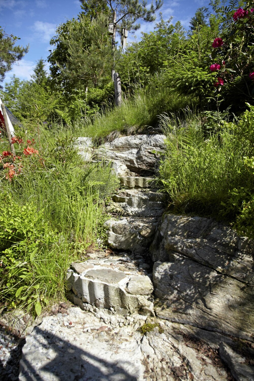 STEINER: Et svaberg kan bli en flott  fjellhage eller steinbed.