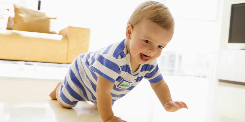 BARN 1 ÅR: Mye skjer fra barnet har fylt ett år og til det fyller to. Ettåringen er i raserfart, kanskje også på to bein? Foto: Foto: Colourbox.