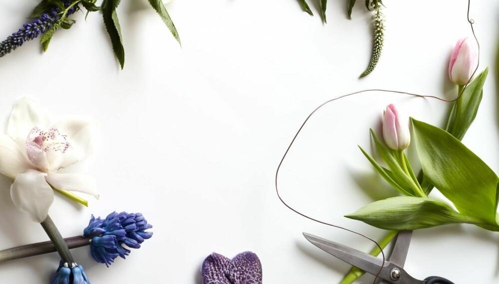 FINE BLOMSTER HVER FOR SEG: Øverst til venstre er en blå storveronica, i midten øverst ser du en hvit storveronica, til høyre to rosa tulipaner. Til venstre for saksen ser du en wandaorkidé, i nedre hjørne til venstre ligger hyacinter, og over hyacintene ser du en hvit orkidé. I denne saken får du noen gode tips til hvordan du kan sette snittblomster sammen til iøynefallende dekorasjoner. Idé og styling: Juni Hjartholm/Steen & Aiesh for Bonytt.