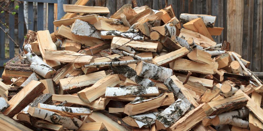 IKKE KAST! Greiner har ekstra god brennverdi, men kommer sjelden i vedsekkene på grunn av produksjonsmetodene som brukes av de profesjonelle aktørene. Men hvis du feller trær på egen tomt, bør du ta vare på greinene og kappe dem i passende lengder for å få mest mulig varme fra treet.