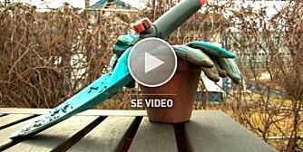 Planting av løk, instruksjonsvideo med Inger Hilmersen, Norsk Gartnerforbund