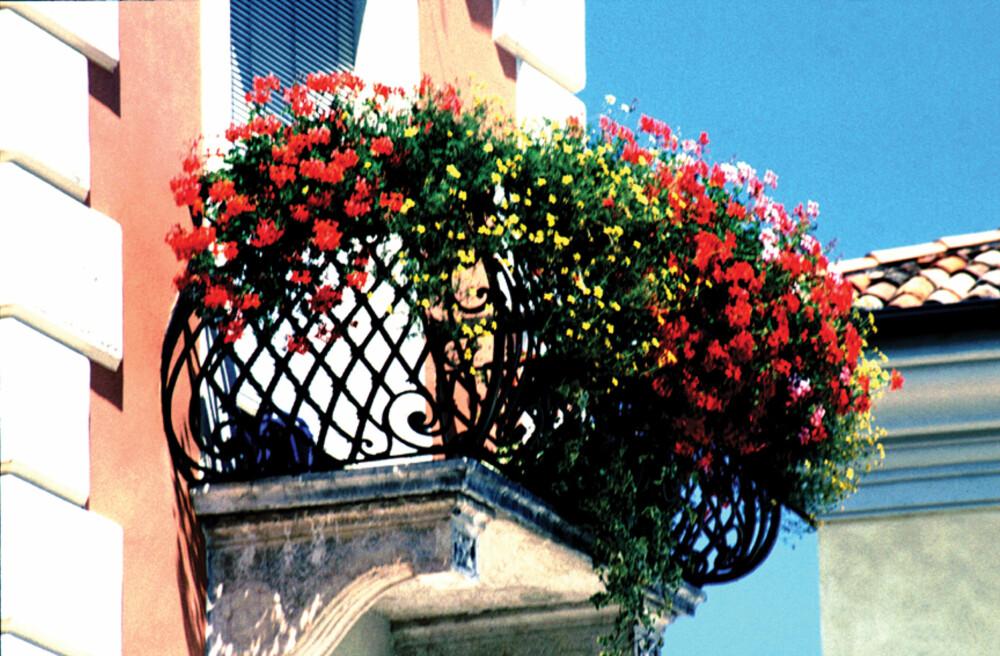 "FARGERIK BALKONG: Få sydenfølelsen på din egen balkong. Foto: <a href=""http://www.flickr.com/photos/mauropaolocascasi/"">mauropaolocascasi</a> på Flickr.com. <a href=""http://creativecommons.org/licenses/by/2.0/""> Noen rettigheter reservert.</a>"