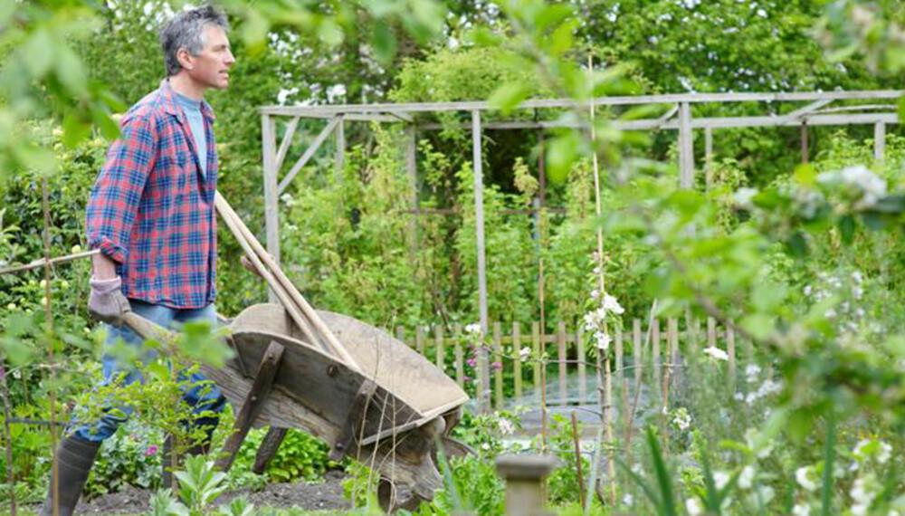 VILTVOKSENDE: Den viktigste hagetrenden i Norge i 2010 blir den naturlige, viltvoksende hagen.