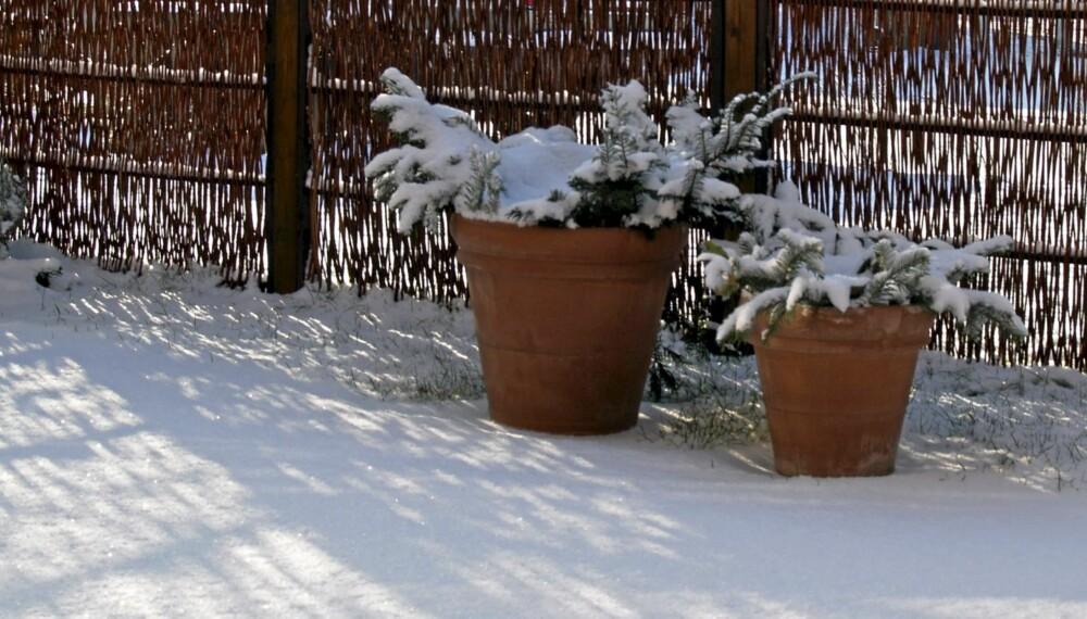 SNØSMELTING: Utolmodige hagentusiaster som vil ha snøen fort bort fra hagen, kan strø på jord eller sand. Det fremskynder smeltingen.