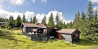 HYTTE TIL HØSTFERIEN: Denne hytta på Sjusjøen har en prislapp på 1,3 millioner og ligge rett ved løypa til Birkebeinerrittet.