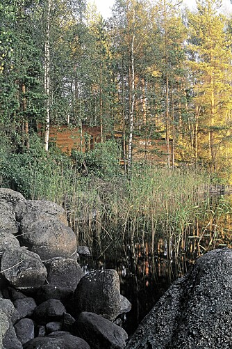 TILPASSET TERRENGET: Anlegget ligger nesten usynlig mellom trærne ned mot den grunne sjøen i Midt-finland.