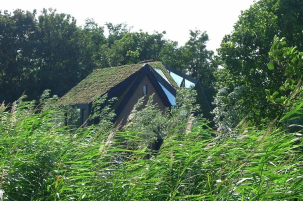 BORTGJEMT: Det var et ønske at huset skulle passe inn i omgivelsene.