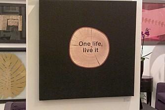 BILDE MED TRE: Dette bildet er lagd av et lerett med et stykke tre og har fått påskriften one life, livet it.