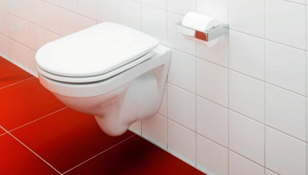 DYR FEIL: Ved feil montering av vegghengte klosetter kan det oppstå store vannskader.