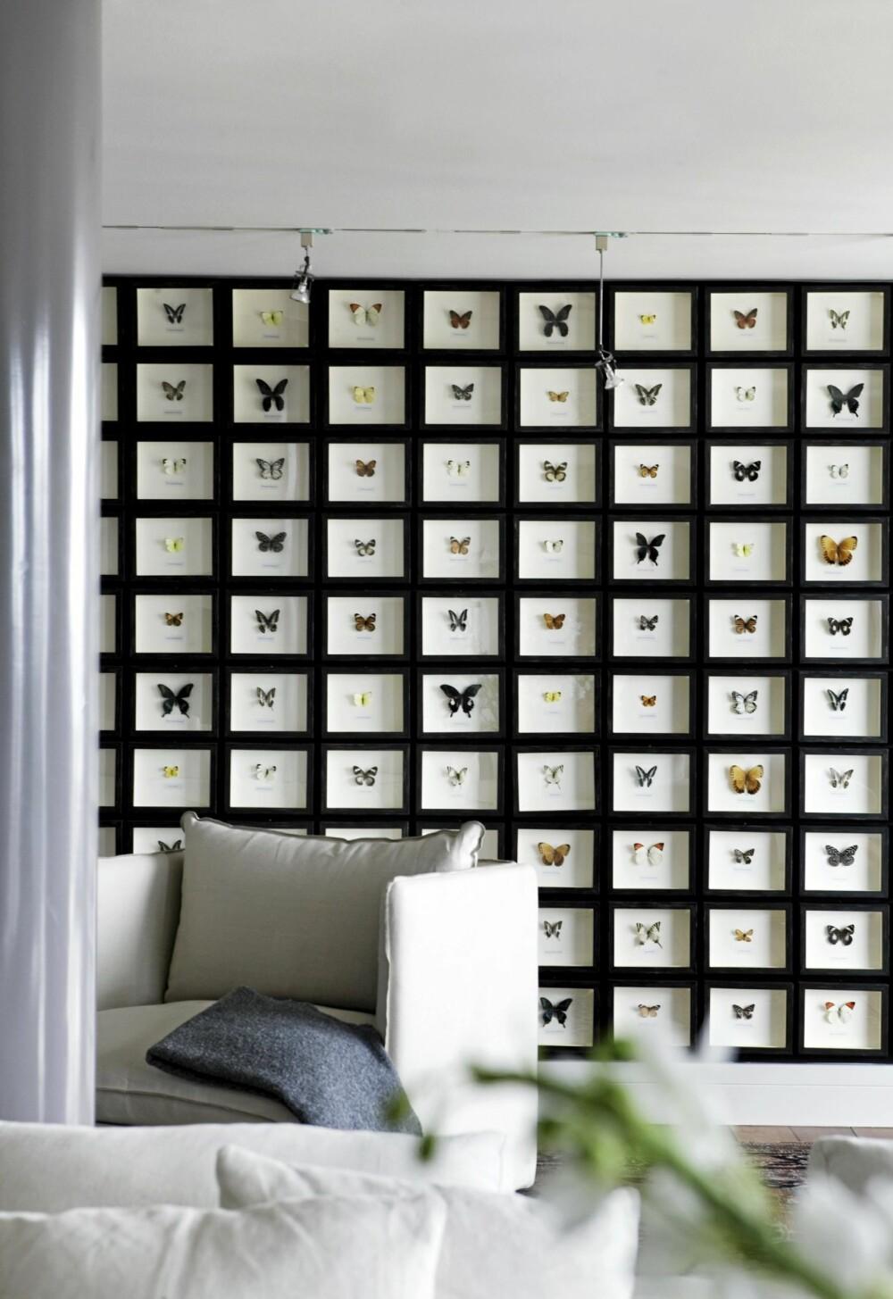 SOMMERFUGLEFFEKTEN: En hel vegg kledd med sommerfugler gjør inntrykk.