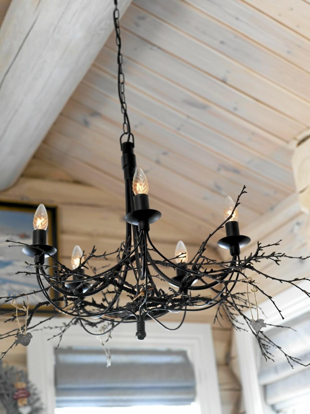 KVISTLAMPE: Naturelementer i interiøret er populært og dekorativt