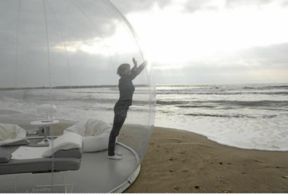 GULLFISK: Man må vel føle seg litt på utstilling inne i dette teltet?