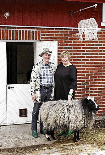 SAMLET. Glasskunstnerne Willy Andersson og Astrid Hanssen sammen med spælsauen Magnus, sistnevnte er også innesau. Oksen på veggen er fra Eka Acosta.